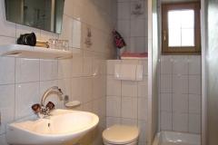 Dusche mit Waschbecken und WC